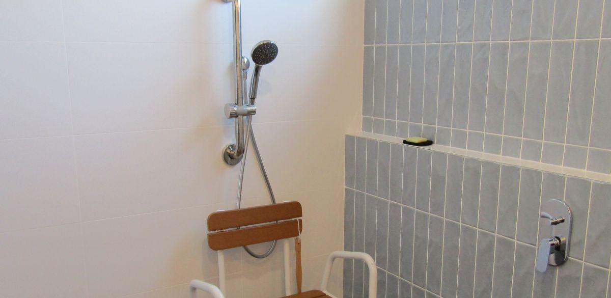doracreek main project gallery shower2