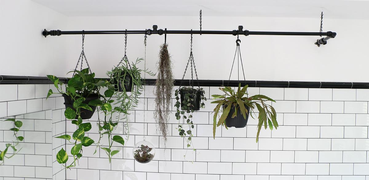 Reece bathroom living wall inspiration