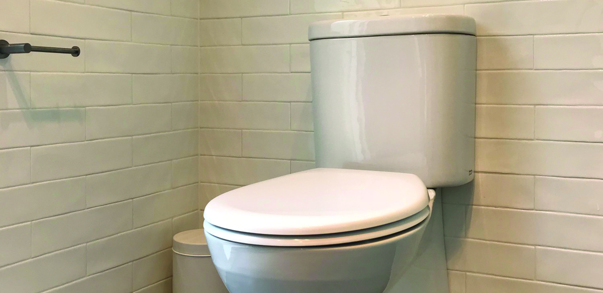 aldate ensuite project gallery toilet