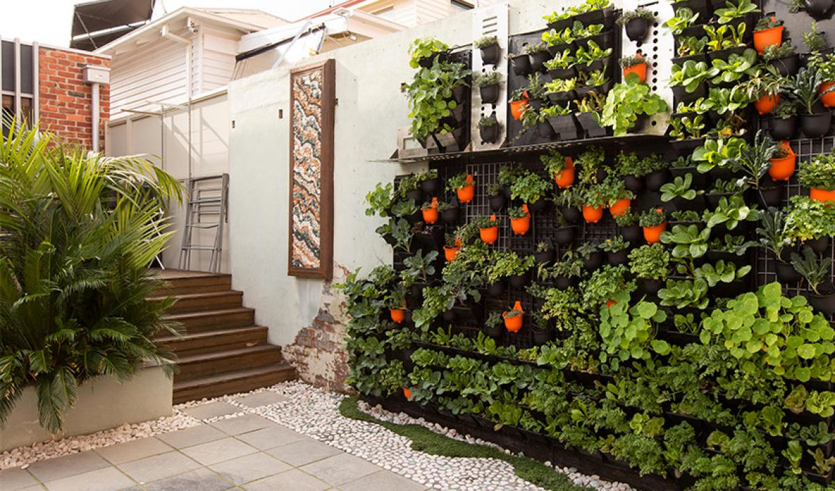Richmond Vertical Garden 1 2