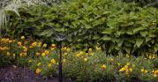 gardenready small